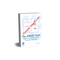 The DMAIC Suite Multi-language bundle license for a training class